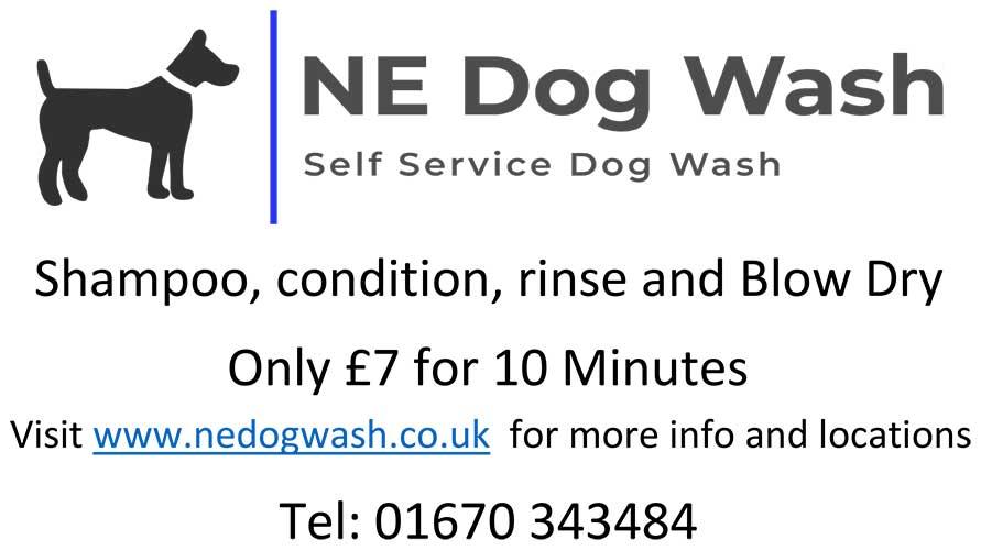 NE Dog Wash